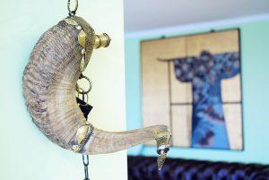 Showroom Exotique - Pipera