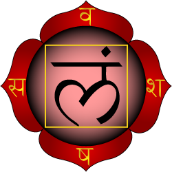 1. Chakra de baza -  Muladhara