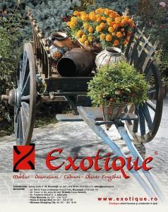 Exotique-machete-publicitare (30)